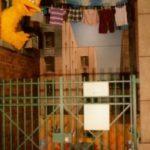 Sesame Street, Strong Museum